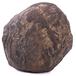 惊天陨石出现在上海收藏界!
