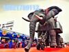 仿真机械大象出租,机械大象租赁,万达房产景区活动方案