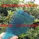 安康阳光板/商洛耐力板/平凉波浪板采光罩/庆阳阳光板/渭南耐力板/