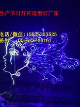 品种多样LED灯笼图片