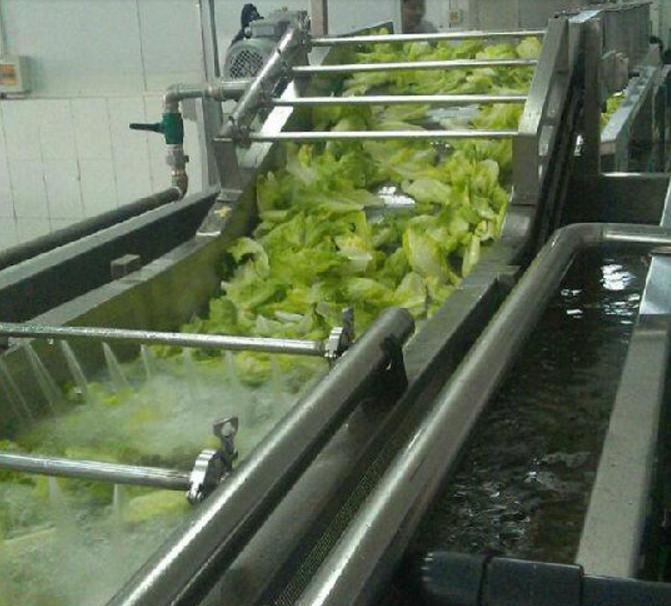 菠菜清洗機