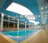 恒温泳池设备选法国戴高乐经验丰富售后完善图片
