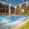 泳池水处理设备厂家恒温泳池设备厂家优选戴高乐泳池