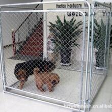 供应大型狗笼子1.8米圆管狗笼牲畜围笼销售