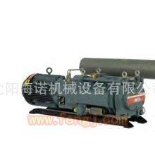 维修光伏设备爱德华真空泵IH600图片