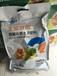 蔬菜发生药害最实用的补救办法河北为峰肥业全能胖墩冲施肥
