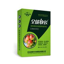 苹果中后期做好四要点,果大芽又饱果树叶面肥全能胖墩
