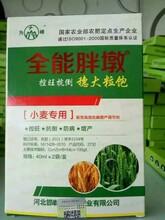 小麦控旺药剂选择指南!全能胖墩小麦叶面肥