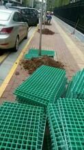 河南樹篦子用玻璃鋼格柵廠家直供樹穴篦子圖片