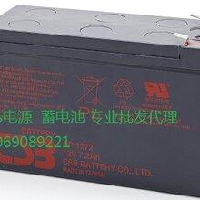 正品EAST易事特12V100AH铅酸蓄电池NP100-12型号图片