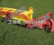 背负式割草机价格携带便捷效率高图片
