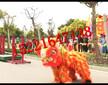 提供2017年最新元宵节新年创意节目演出舞龙舞狮舞蹈图片