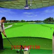 提供江浙沪专业室内3D投影模拟高尔夫出租/室内高尔夫出租租赁