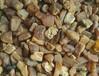 波兰海飘漂料琥珀蜜蜡原石批发5-10,8000一公斤
