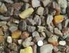 批发乌料琥珀蜜蜡原石高通10-20,公斤起18800
