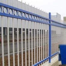 学校锌钢护栏厂家锌钢护栏价格锌钢护栏多少钱一米图片