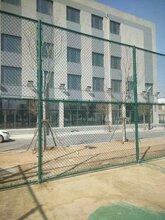 围栏网公路护栏网阳旭公路围栏网图片