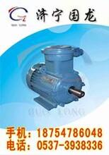 供应16年新品YB2-180M-4系列电机价格