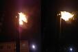 焦化廠焦爐煤氣放散點火系統