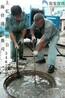 常州武进区化粪池清理清理隔油池