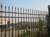 长沙幼儿园围墙护栏安装选锌钢材质
