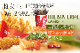 油炸小吃原料批发/绵阳腿肉批发/魔法鸡块供应/汉堡面包