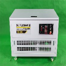 大澤動力汽油發電機10千瓦便攜式圖片