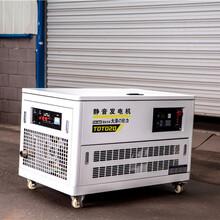 大澤動力10kw汽油發電機圖片