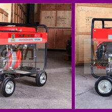 大澤動力230A汽油發電電焊機