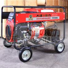 大澤動力250A汽油發電電焊機