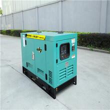 200千瓦大型柴油發電機配推車圖片