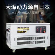 50千瓦汽油發電機箱體式圖片