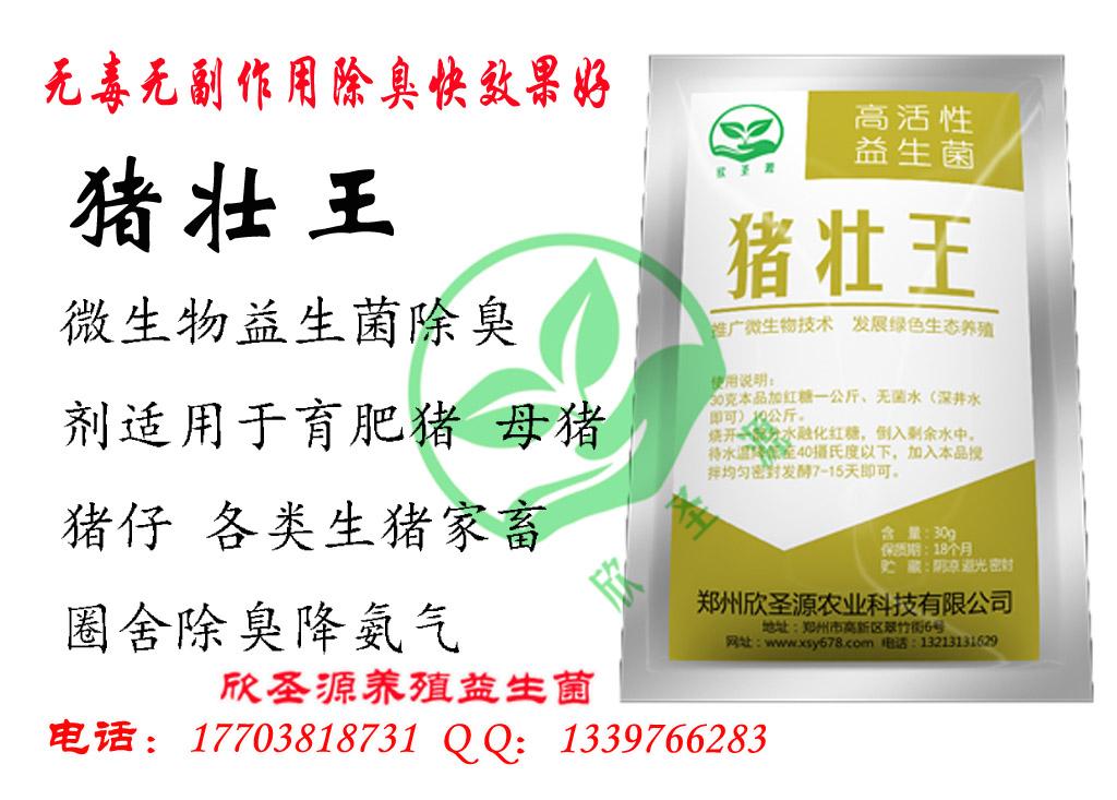 发酵红薯渣喂猪的发酵剂西安有卖吗,饲料发酵剂价格