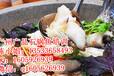 学石锅鱼哪里好,广东石锅鱼培训,石锅鱼做法