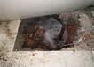 中山工廠消防管查漏漏水維修恢復志通管道工程檢測公司