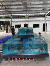 廣州帽峰山清洗魚池換水-白云區山莊魚池怎么清淤泥-白云山農莊換水消毒圖片