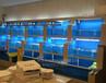 海鮮魚池最簡單的過濾方法,酒店魚池怎么過濾的,廣州四會市海鮮魚池定做
