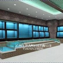 四会市定做海鲜鱼池公司,四会市酒店海鲜鱼池怎么做,广东肇庆定做海鲜鱼池图片