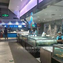 巽寮灣哪里定做生鮮缸,惠東定做海鮮市場魚池,嘉宏市場定做玻璃魚缸圖片