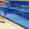 惠东定做海鲜市场鱼池