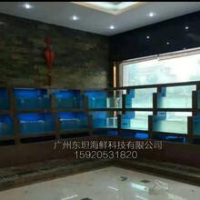 惠州定做海鮮池,惠陽區哪里有海鮮池制作公司,惠陽萬達餐廳海鮮魚池圖片