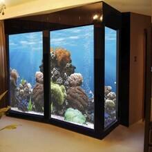 順德哪里定做海水魚缸-珊瑚缸什么造型好看-順德海水魚缸設計圖片