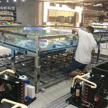 海鮮魚池設計安裝/廣州哪里有海鮮池制冷機/越秀區定做制冷海鮮池圖片