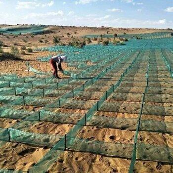 上部蜂窝下部平纹固沙网防沙网沙障20厘米固沙网厂凤凰联盟登录