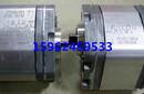 直销新鸿HGP-22A-L1111L双联齿轮泵