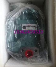 NACHi不二越IPH-22B-3.5-3.5-11规格型号全系列齿轮泵图片
