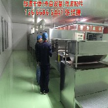 花椒茴香干燥杀菌设备,食品调味料杀菌设备图片