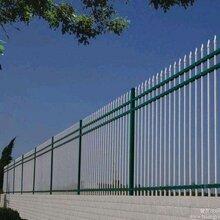 厂房围栏/工厂护栏/工业园区围墙栏杆图片