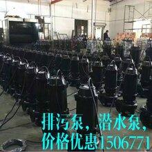 上海威泉泵业制造有限公司,WQ排污泵,搅匀排污泵图片