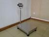 供应常用的电子秤,600kg不锈钢电子台秤哪里好